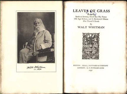 walt whitman life and poetry essay Walt whitman discussion questions - 1 walt whitman is often considered to be a larger-than-life poet, writing expansive lines and embracing the whole of america as his inspiration in song of myself (part 31), however, he writes, i believe a leaf of grass is no less than the journeywork of the stars.
