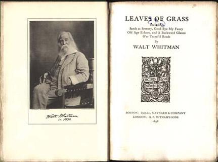 essay on walt whitman song of myself