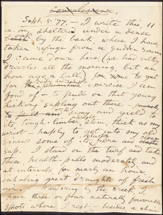 a literary analysis of song of myself by whitman - an analysis of walt whitman's song of myself `whitman was always asking questions he believed that life's goal or cause was a mystery  even whitman's literary.