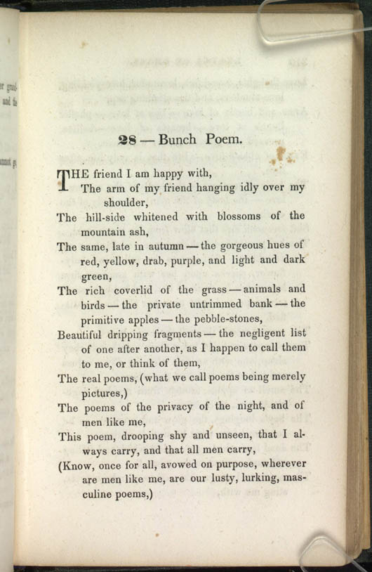 28 Bunch Poem Leaves Of Grass 1856 The Walt
