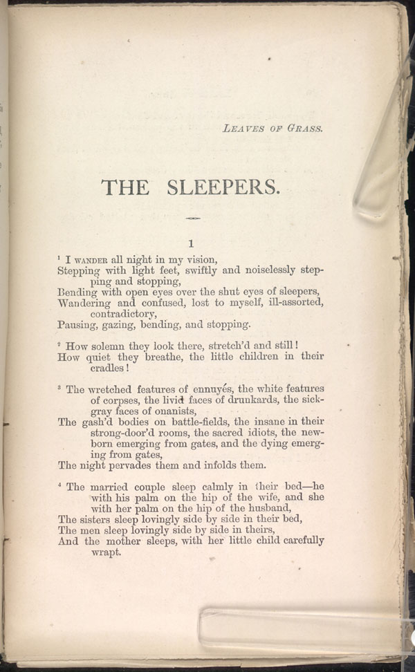 The Sleepers Leaves Of Grass 1871 The Walt Whitman