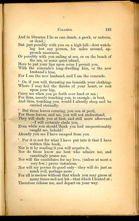 an analysis of the poem whoever you are holding me now in hand by walt whitman The walt whitman archive  whoever you are, now i place my hand upon you, that you be my poem,  do not conceal you from me.