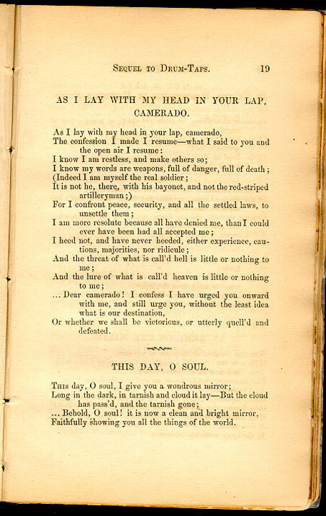 as i lay with my head in your lap  camerado    leaves of grass  1867