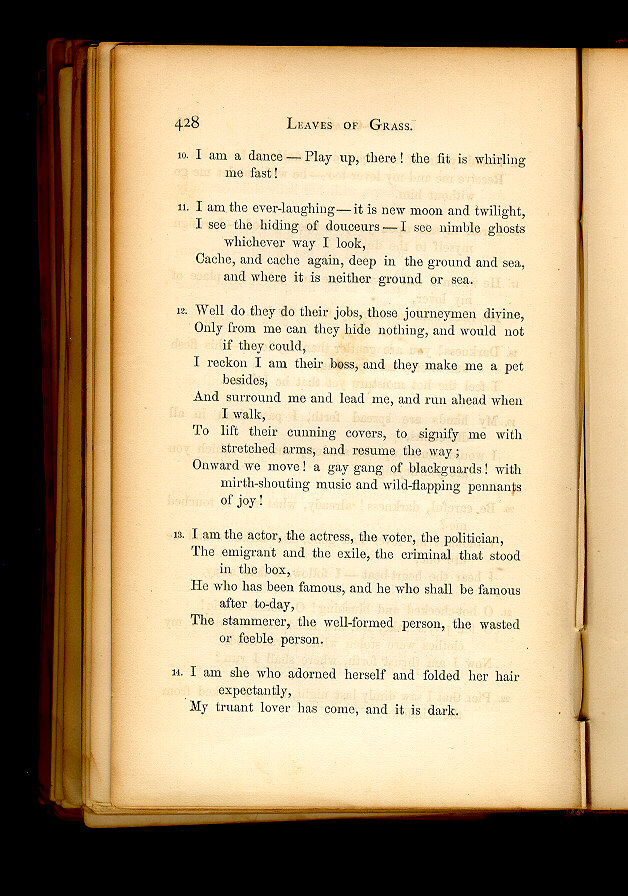 a look at walt whitmans transition in the publication of leaves of grass
