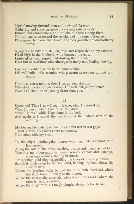 an overview of walt whitmans leaves of grass poem out of the cradle endlessly rocking Walt whitman is the author of leaves of grass and whitman took out a copyright on the first edition of leaves of grass teach this poem poem-a-day.