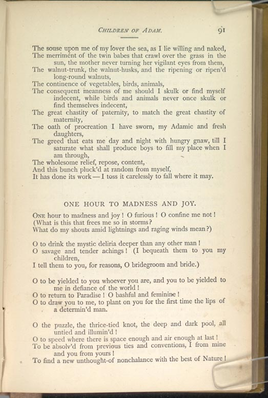 one hour to madness and joy 2018-07-19 jr lemaster and donald d kummings, eds, walt whitman: an encyclopedia (new york: garland publishing, 1998), reproduced by permission one hour to madness and joy was the sixth poem in enfans d'adam, later called.