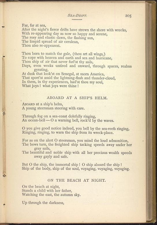 a review of on the beach at night alone by walt whitman In the sea-drift cluster: transcendence in on the beach at night, the world below the brine, and on the beach at night alonewalt whitman quarterly review.