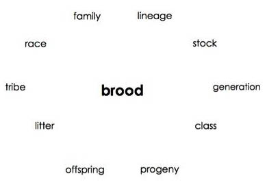 The image shows the word 'Brood' surrounded by other back translations, from German to English, of the way the word has been rendered in German: 'lineage,' 'stock,' 'generation,' 'class,' 'progency,' 'offspring,' 'litter,' 'tribe,' 'race,' and 'family.'